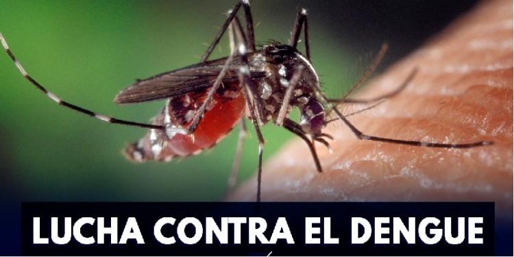 Intensifican estrategias contra el dengue