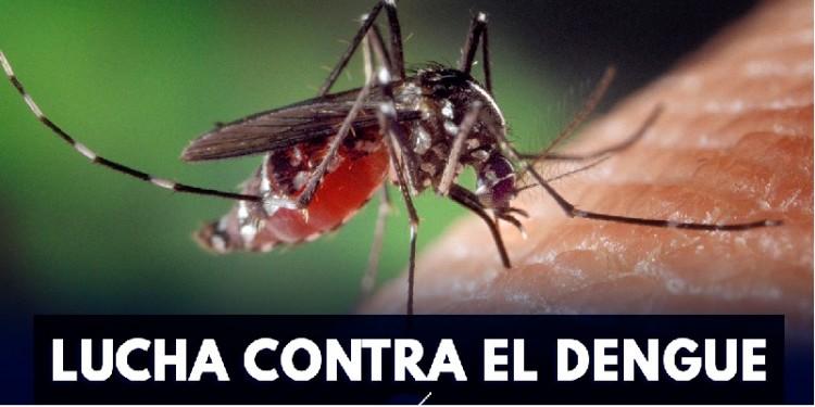 Se reactivan las alarmas de Dengue en Neiva