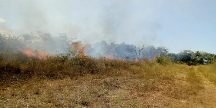 Se mantiene la alerta por incendio forestales en Neiva