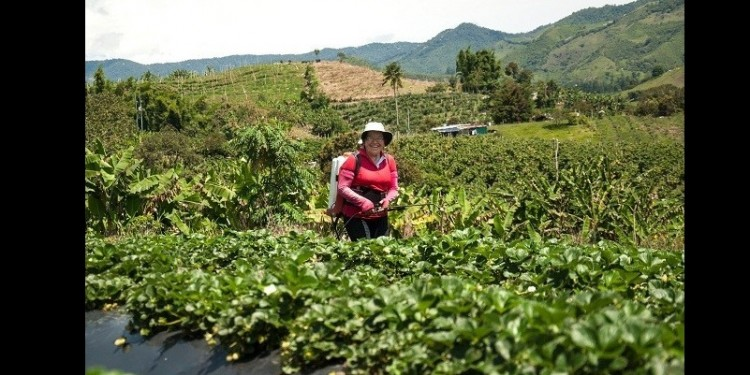 Nuevo instrumento para beneficiar al campo colombiano