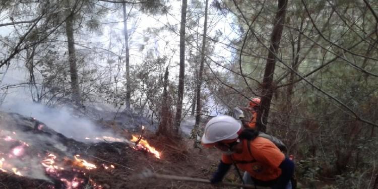 Nueve municipios del Huila en alerta naranja por incendios de cobertura vegetal