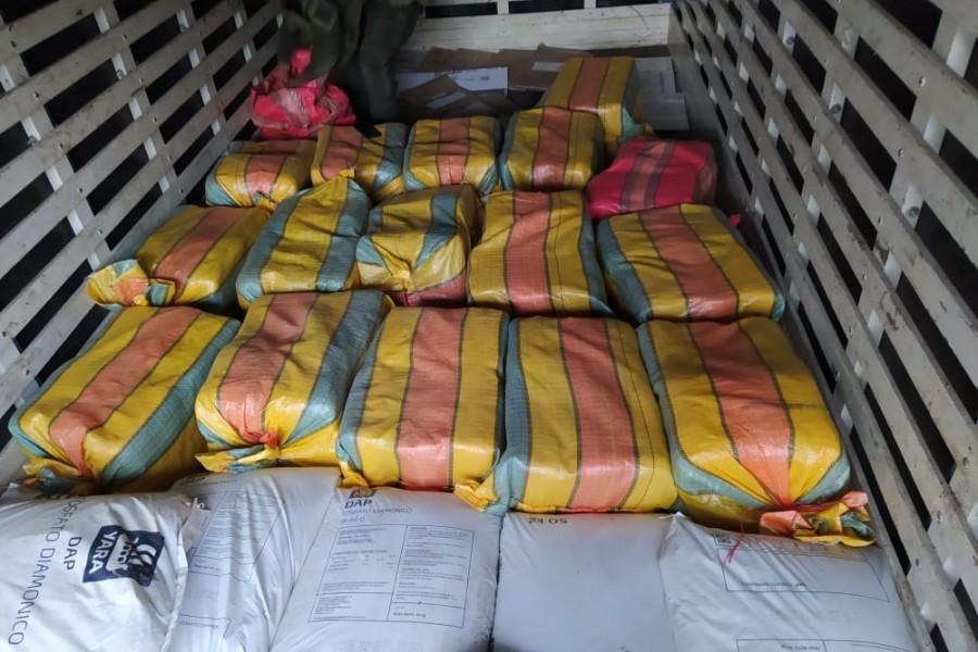 Incautan en el Huila cargamento de marihuana con destino a Brasil