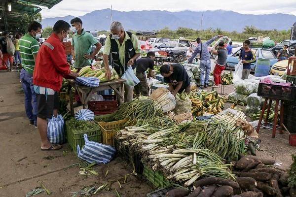 Precio en el mercado comienza a regularse en Surabastos